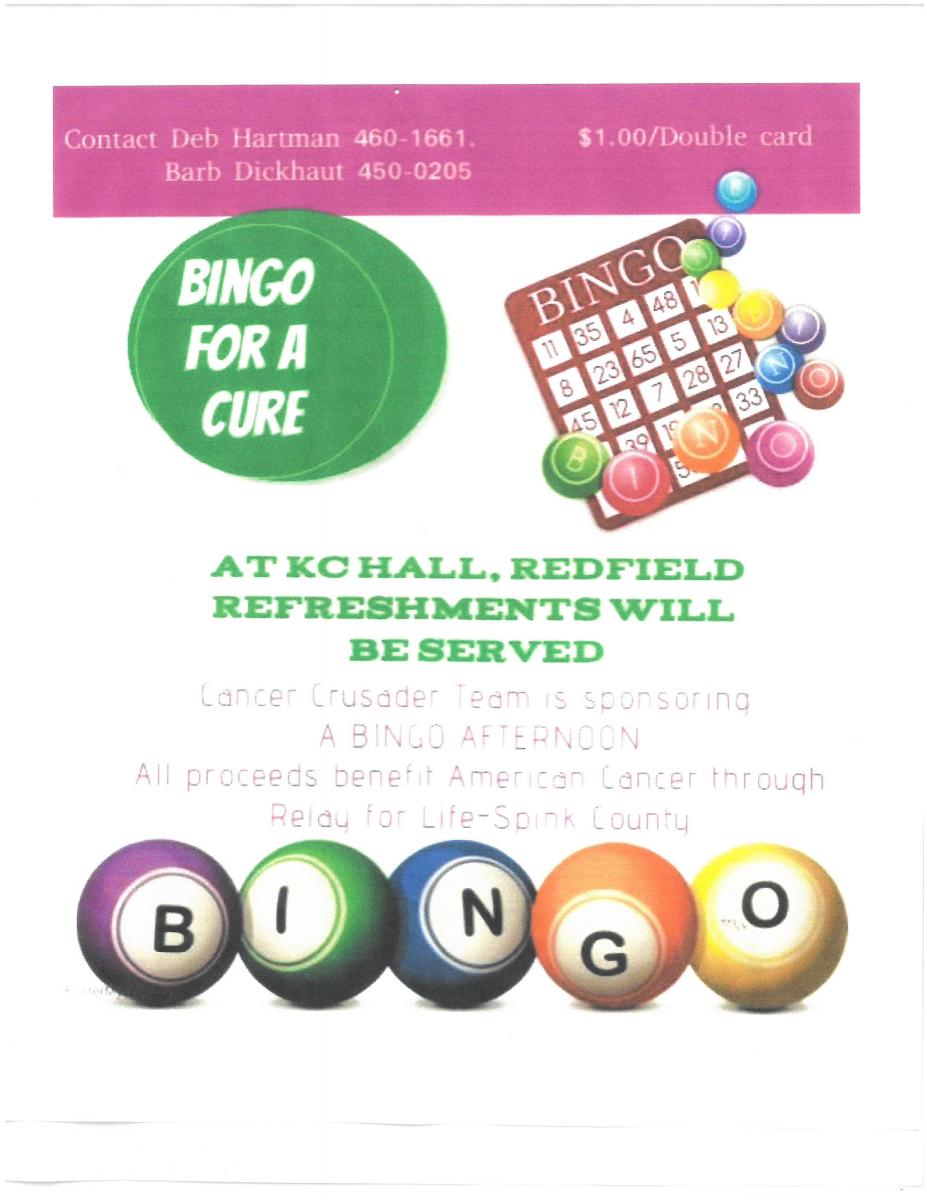 BINGO for a Cure Photo