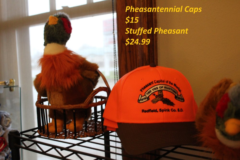 Pheasantennial Cap and Stuffed Pheasant